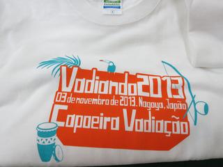 camisetavadiando2013.jpg