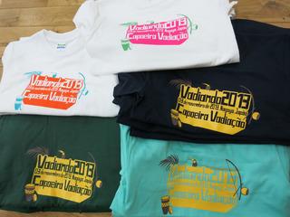 camisetavadiando2013b.jpg