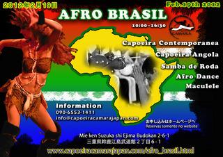 capoeiracamaraAfro_brasil.jpg